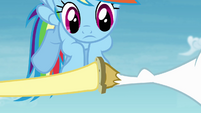 Fluttershy touches the horseshoe on Bulk's hoof S4E10