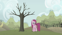 Pinkie Pie in front of withering tree S03E13