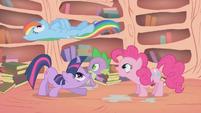 Rainbow Dash cruising over Twilight, Spike, and Pinkie S1E09