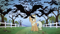 Bats flying towards the screen S04E07.png
