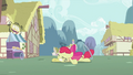 Apple Bloom falls to the ground S2E06.png
