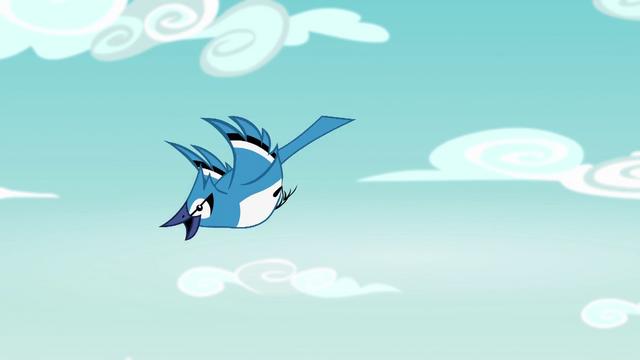 File:Bluebird flying through the sky EG4.png