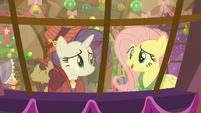 """Flutterholly """"a perfect Equestria"""" S06E08"""