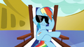 Rainbow Dash lowers her sunglasses S6E21.png