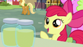 Apple Bloom offering to buy pear jam S7E13.png