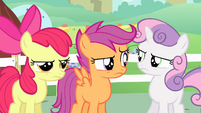 Cutie Mark Crusaders unfazed S4E05