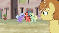 Feather Bangs looks at the Swooning Ponies S7E8
