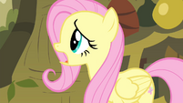 Fluttershy 'I'd do anything for the animals!' S4E14