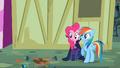 Pinkie Pie and Rainbow Dash avoiding a flowerpot S2E08.png