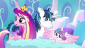 """Princess Cadance """"it looks that way"""" S6E1.png"""