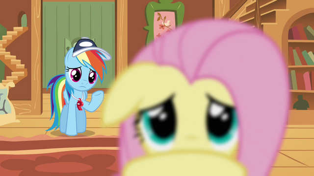 File:Rainbow Dash wasn't that bad S2E22.png