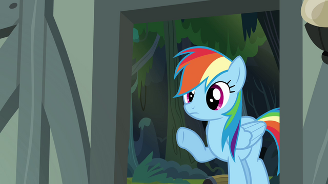 File:Rainbow Dash looking into the house S4E04.png
