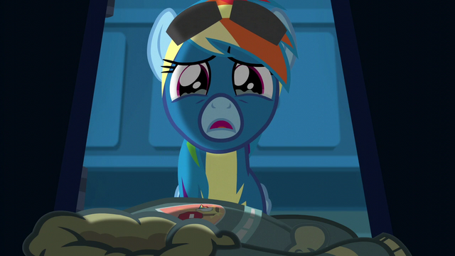 File:Rainbow Dash getting teary-eyed S6E7.png