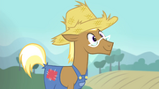 Trenderhoof wants to live on a farm S4E13.png