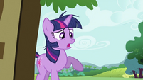Twilight Sparkle seeing Fluttershy 'fighting' a bear S2E03