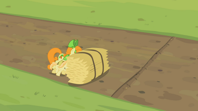 File:Golden Harvest S02E05.png