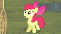 Apple Bloom surprised S4E17