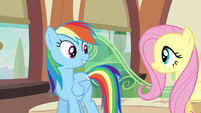 Rainbow Dash and Fluttershy on the train S03E12