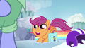 """Scootaloo """"an inspirational pony in my life"""" S7E7.png"""