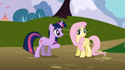 Twilight and Fluttershy1 S1E01.png