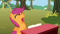 Frustrated Scootaloo S01E18.png