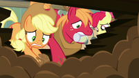 Applejack and Big Mac dig madly in the dirt S7E13