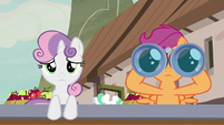 Scootaloo looking through binoculars S7E8
