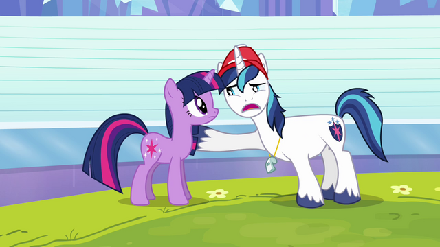 "File:Shining Armor ""everything's gonna be okay"" S03E12.png"