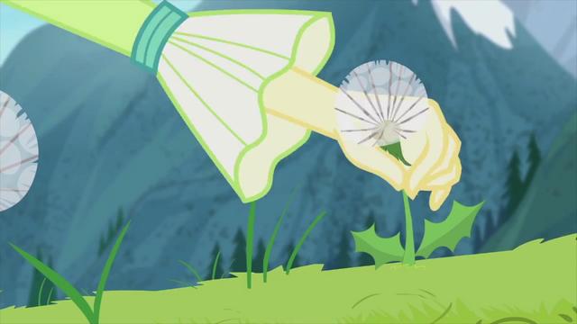 File:Fluttershy picks a dandelion EG2.png