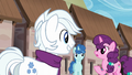 Double Diamond, Party Favor, and Sugar Belle S5E26.png