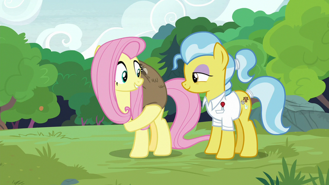 File:Fluttershy lifts Lola the sloth onto her back S7E5.png