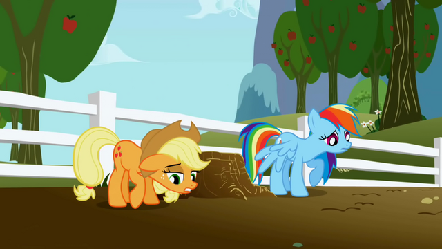 File:Disappointed Applejack and Rainbow Dash S1E03.png
