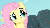 Fluttershy grinning S4E07