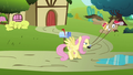 Fluttershy swings Globe Trotter around S2E19.png