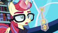 """Moon Dancer annoyed """"what?"""" S5E12.png"""