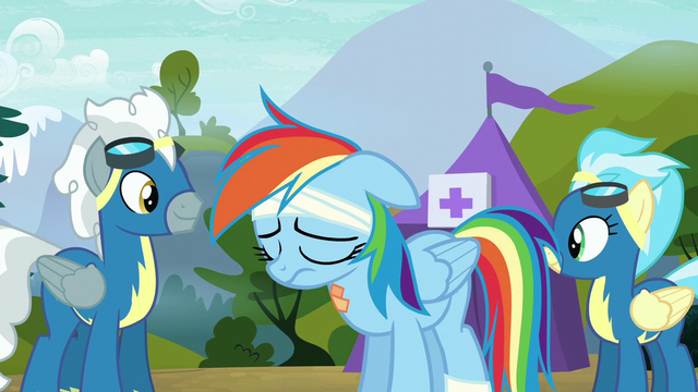 File:Silver Zoom and Misty Fly look at each other S6E7.png