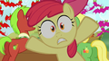 Apple Bloom Everypony jump out S03E08.png