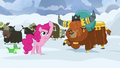 Pinkie Pie makes a drill with her mane S7E11.png
