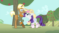 Rarity 'Oh, why, Trend' S4E13.png
