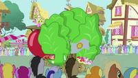 Pinkie Pie's float overtaking tomato float S3E4