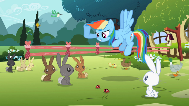 File:Rainbow Dash 'hold a contest' S2E07.png