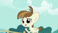 """Featherweight """"Uh, a baby pony, please!"""" S5E19.png"""