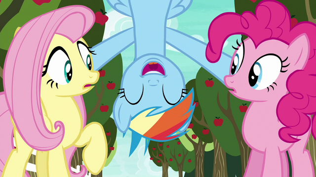 "File:Rainbow Dash ""it's got it all!"" S6E18.png"