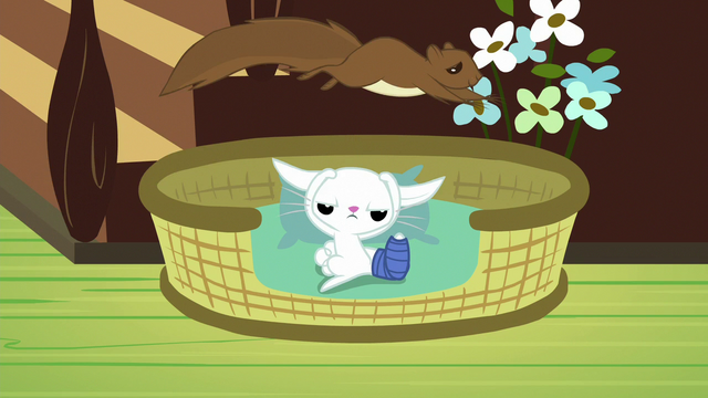 File:Squirrel jumps over Angel Bunny's bed S7E5.png