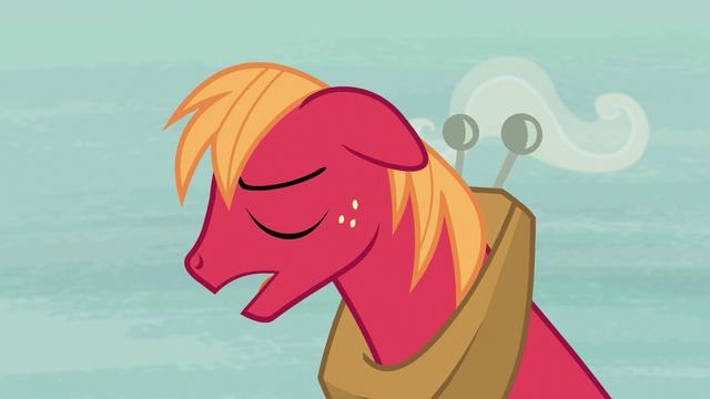 "File:Big McIntosh ""she's a real pony"" S7E8.png"