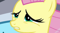 Fluttershy reaches a decision S2E22