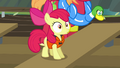 Apple Bloom surprised face S4E09.png