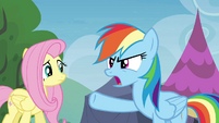 "Rainbow Dash ""I'll give it to you straight"" S4E22"