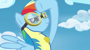 Rainbow Dash saluting the Pegasi S3E07.png