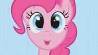 "Pinkie Pie ""All we ever want is indecision"" S1E14"